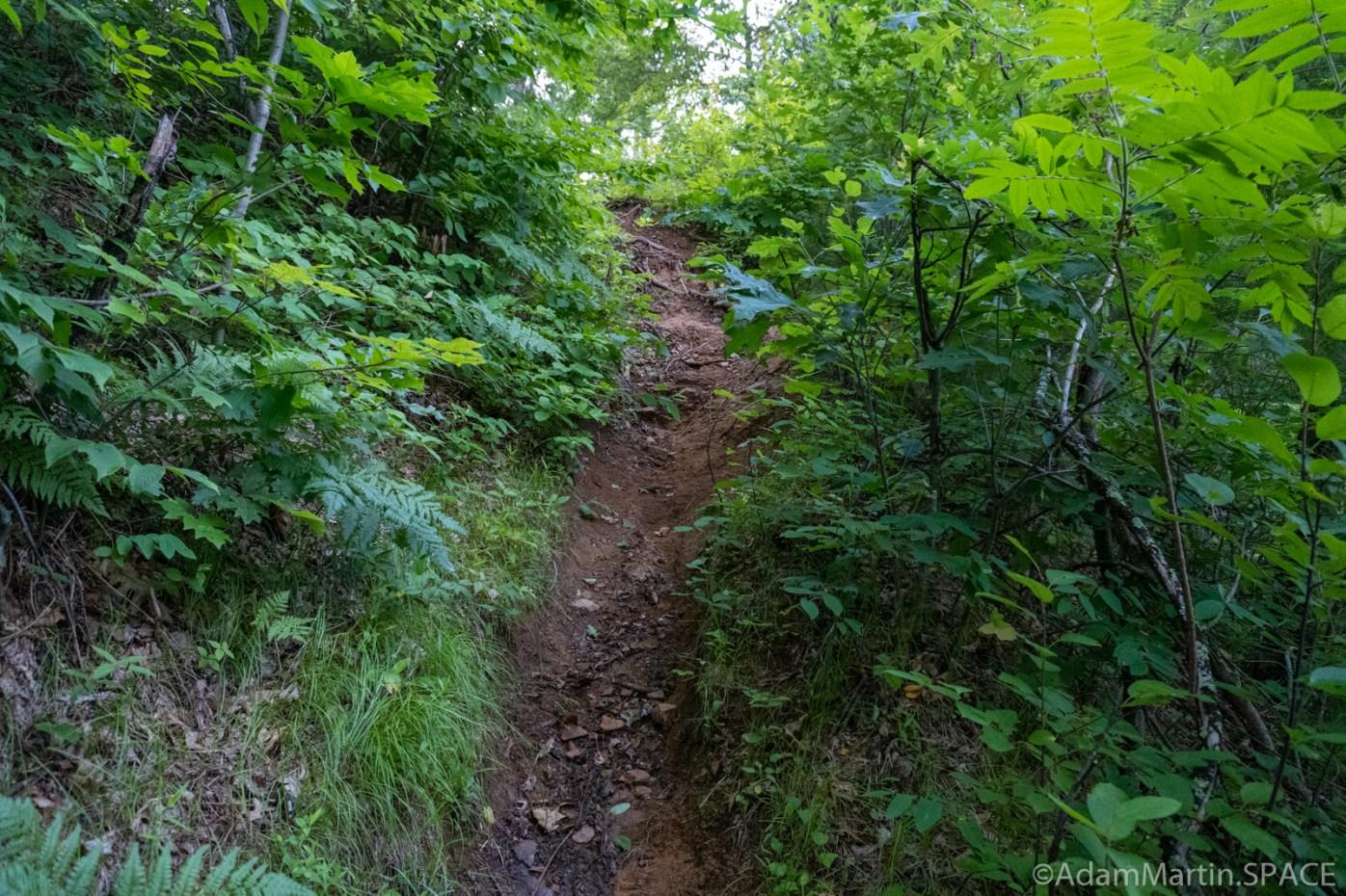 Hamilton Falls - Steep access path down the hill