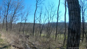 Wisconsin Spring Turkey Hunt 2020
