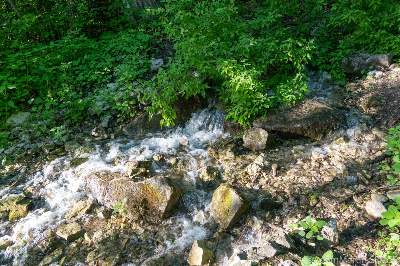 High Cliff State Park - Small riffles at bottom of Lime Kiln Falls (Upper)