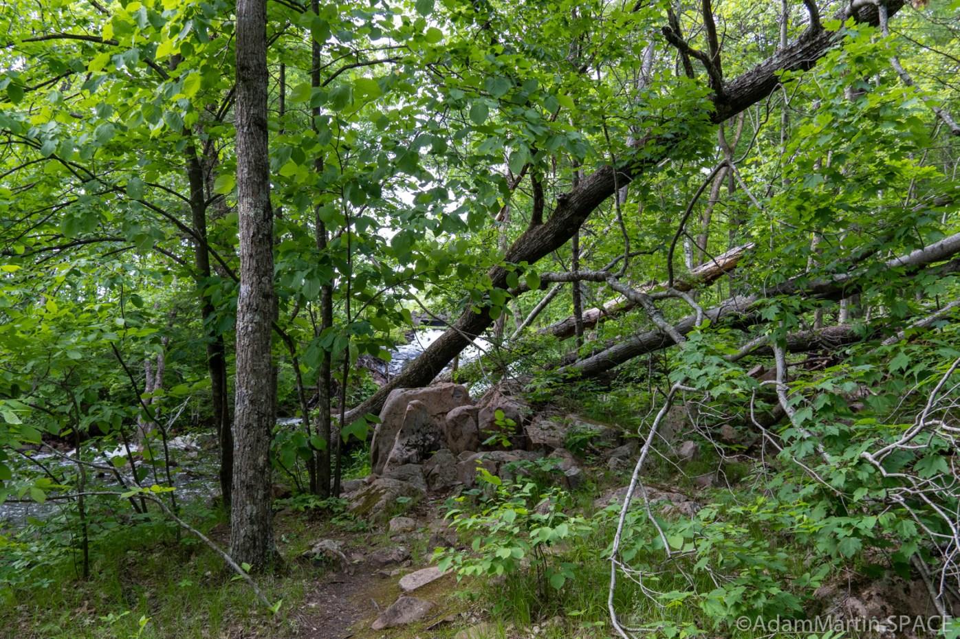 Keller Lake Falls - Downed trees blocking some paths