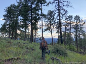 Dad on the hunt for elk near Loco Mountain