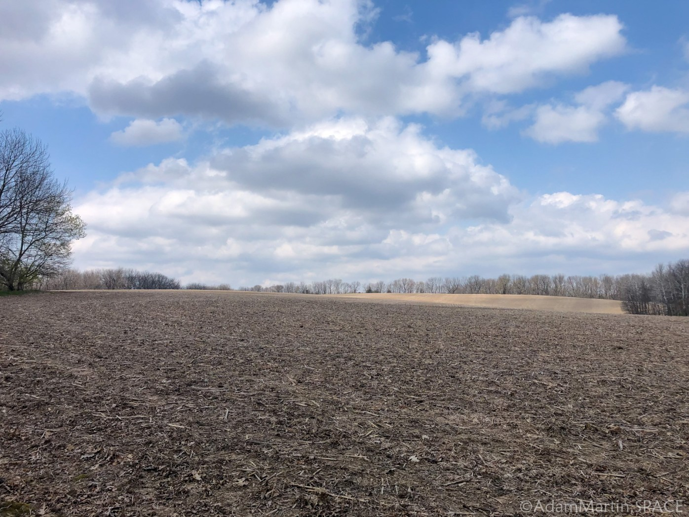 Uplands Trail - Huge open field with blue sky & puffy clouds