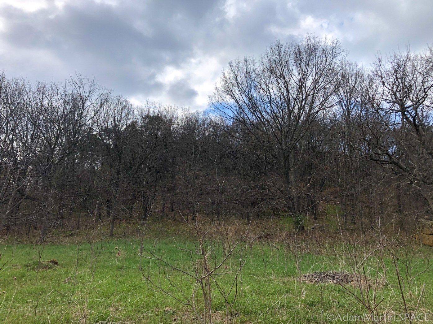 Tall bluff in middle of the Old Orchard Trail