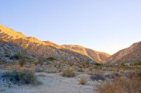 desert1-1000