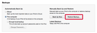 iTunes Backup section