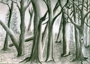 L_Trees