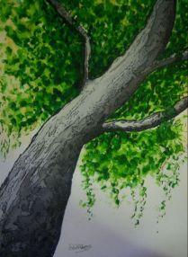 P_Under The Tree