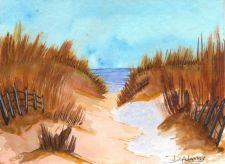 Ocracoke Sand Dunes
