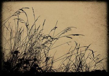sand - Copy (2)