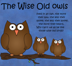Owls-the-wise-old-owls-2 - Copy