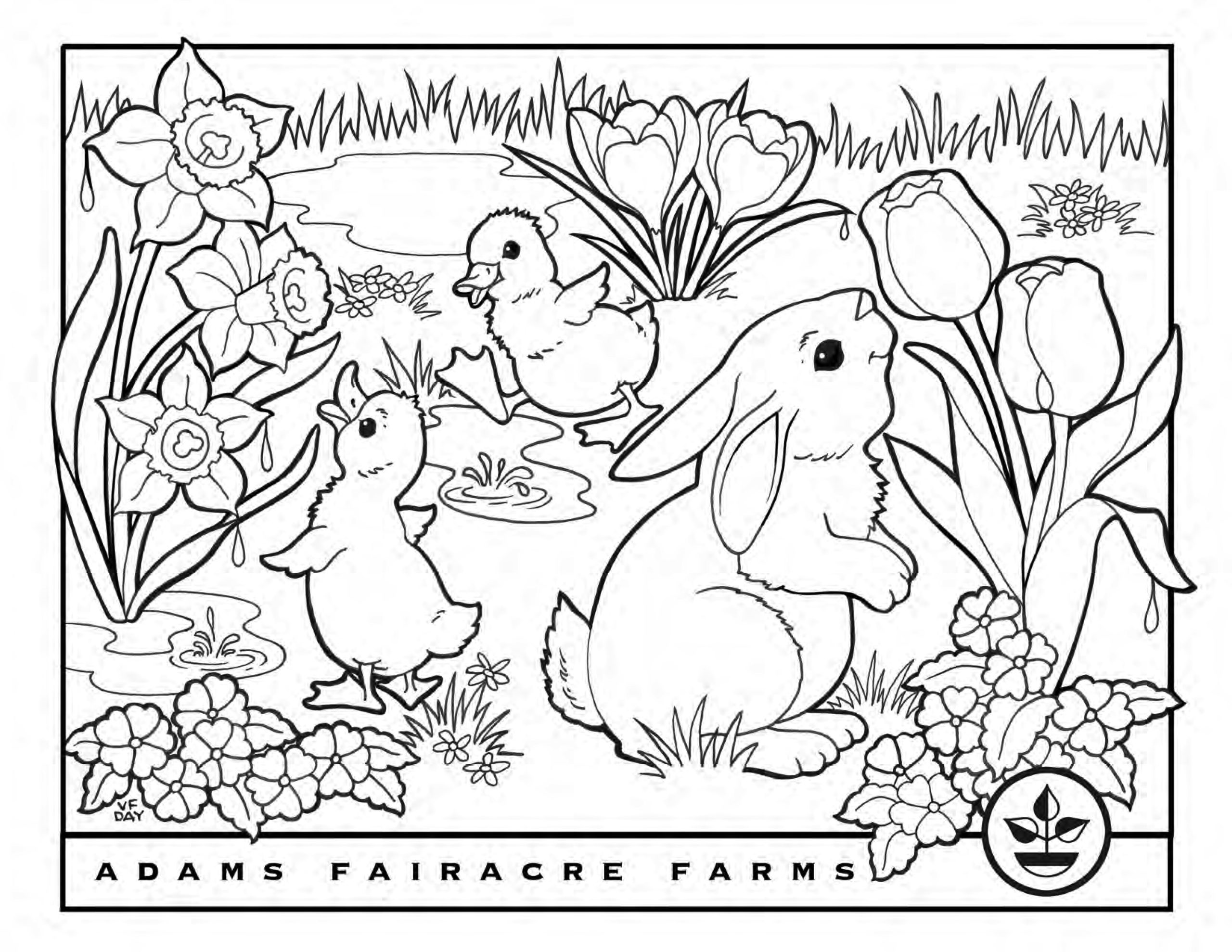 Easter Coloring Pages Adams Fairacre Farms