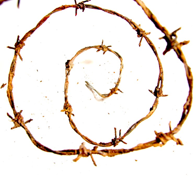 trent reznor hurt, the downward spiral johnny cash hurt, the-downward-spiral-johnny-cash-hurt, nine inch nails hurt, the downward spiral motif
