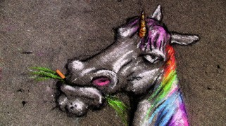 Frost Park Chalk-Off Season 5, Episode 19