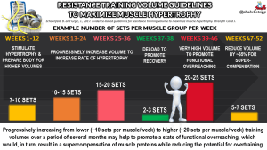 Evidence-Based Guidelines for Resistance Training Volume to Maximize Muscle Hypertrophy