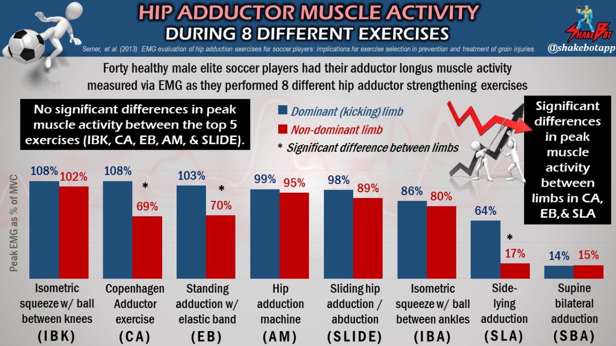 Muscle activity during 8 difference hip adduction exercises