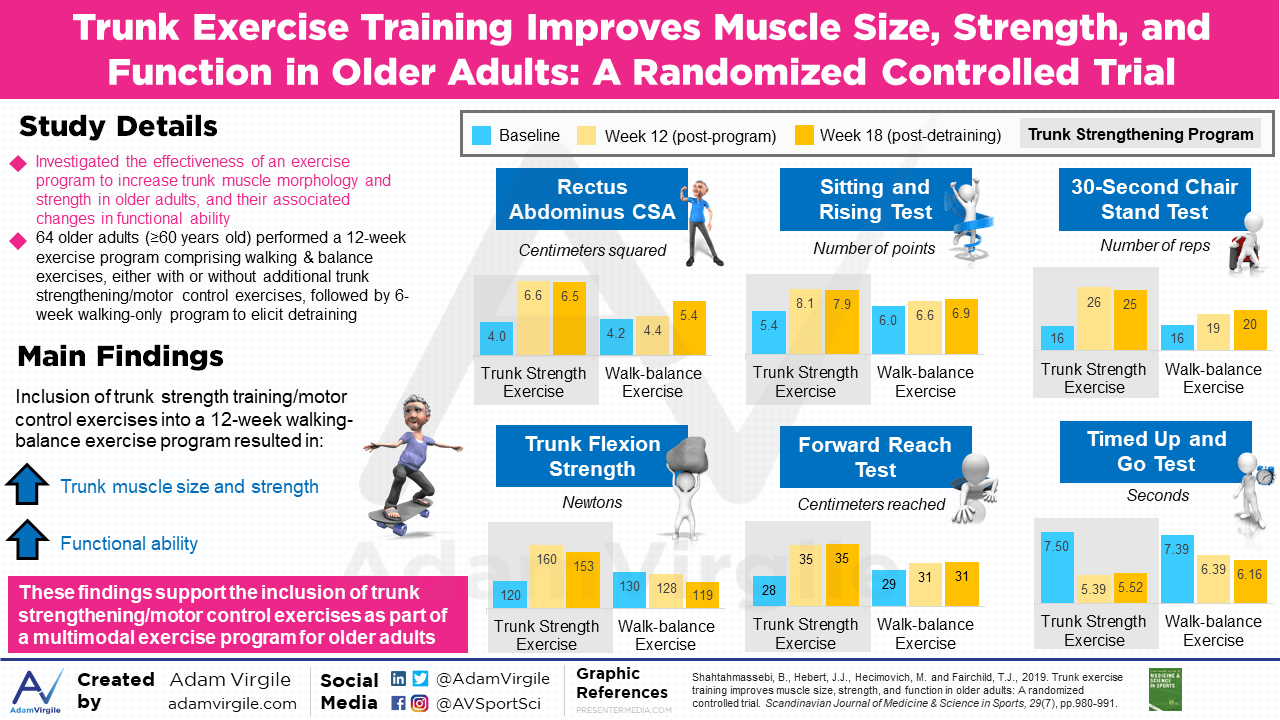 Trunk Exercise Training Improves Muscle Size, Strength, and Function in Older Adults