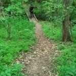 Steep trail at Chucalissa