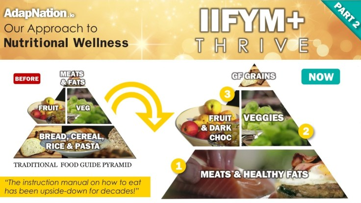 AdapNation - IIFYM+ THrive - Our Approach Pyramid PART 2
