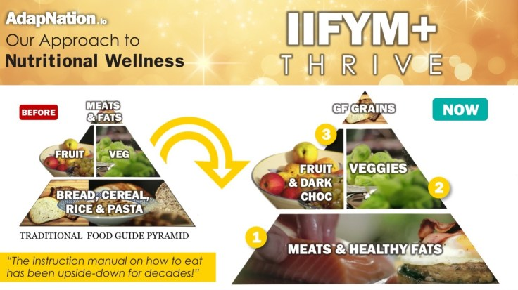 AdapNation - IIFYM+ THrive - Our Approach Pyramid
