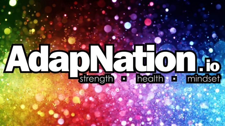 AdapNation - Multi coloured