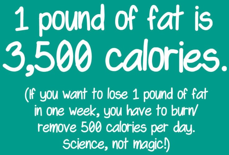 Pound of fat 3500