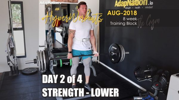 AUG-18 #HyperWorkouts - Day 2/4 - STRENGTH Lower