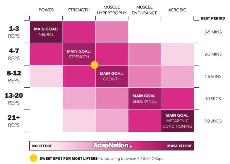 Strength Training Rep Ranges Matrix