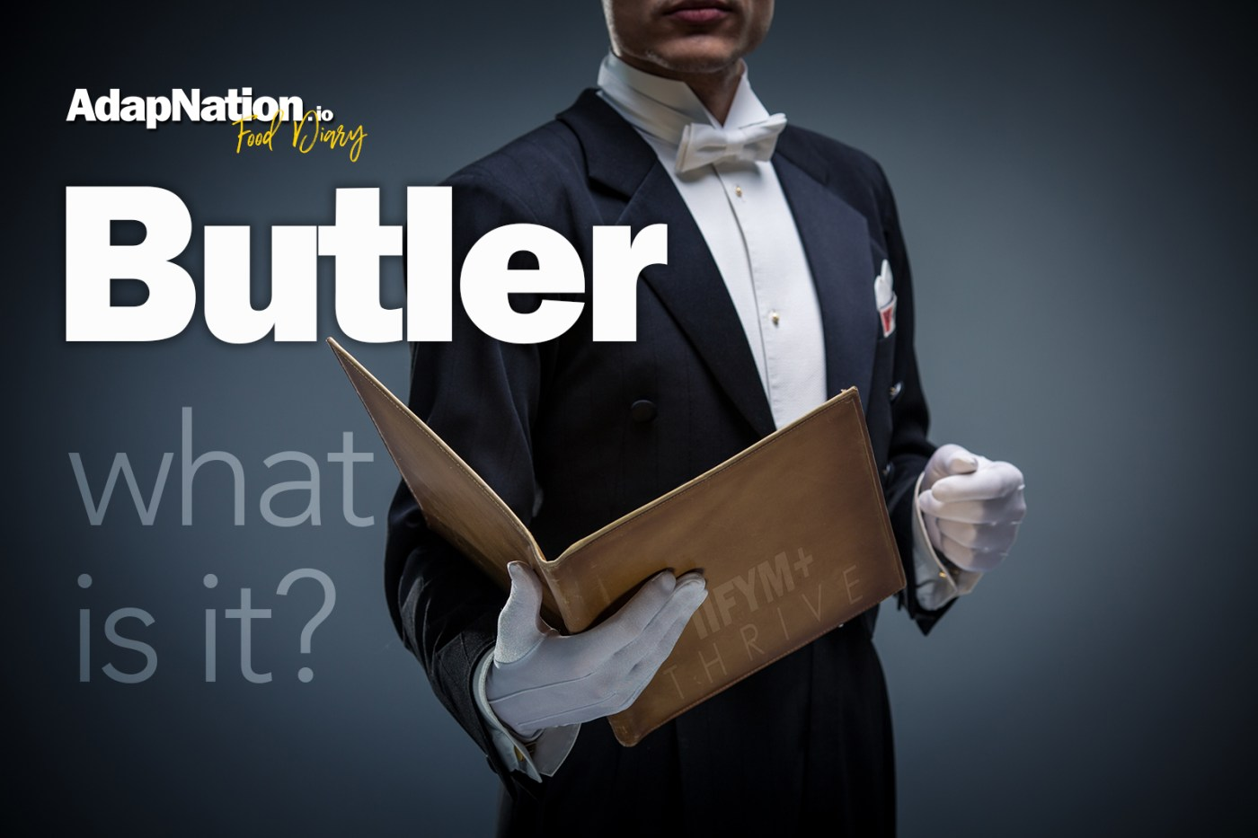 What is AdapNation Food Diary Butler Feature