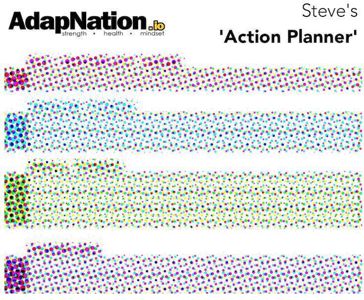 AdapNation Action Planner