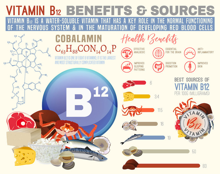 Need for Vitamin B12