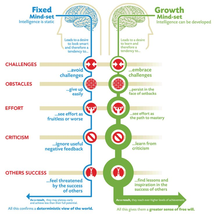 Foxed versus Growth Mindset