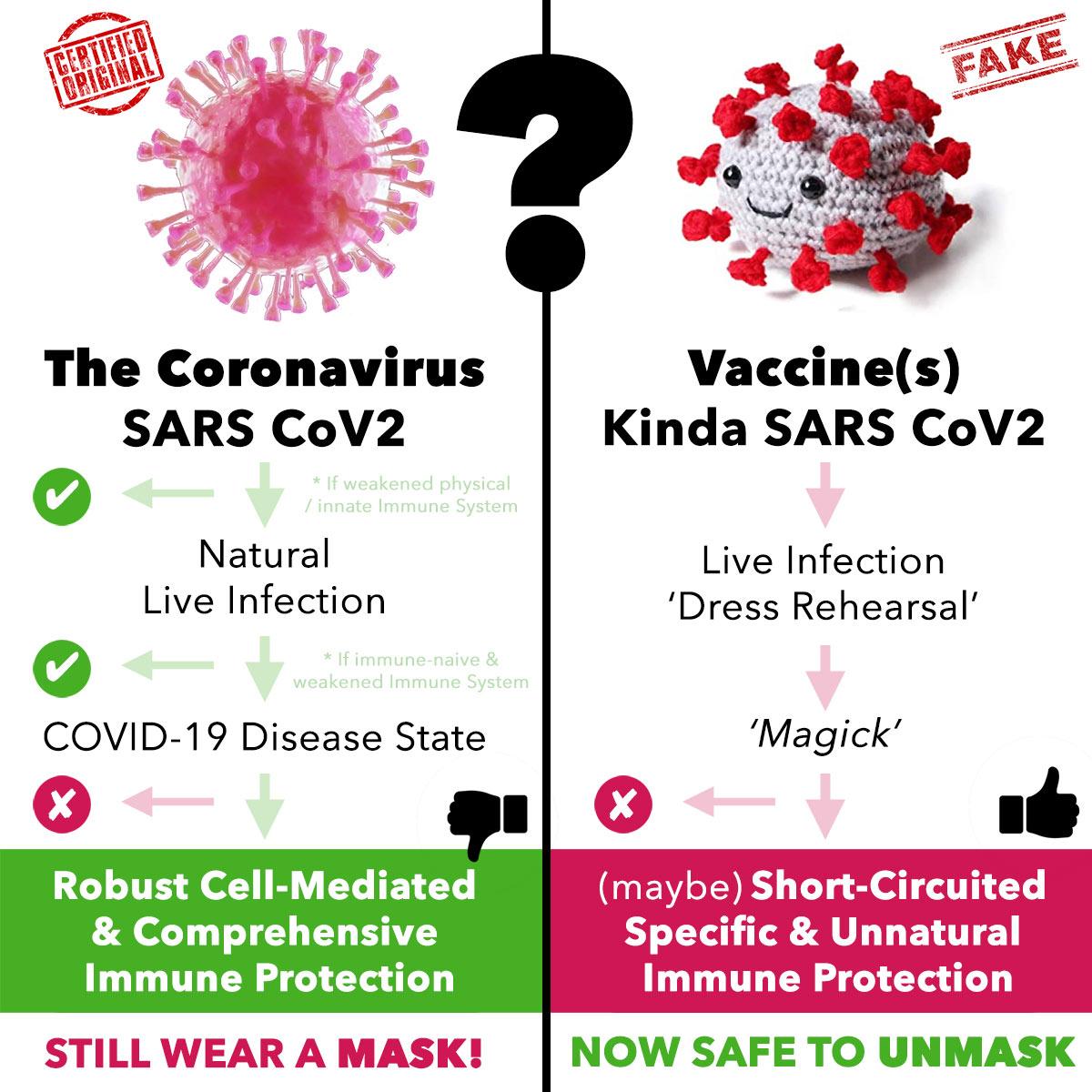 Natural vs Vaccine Herd Immunity