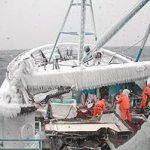 Bering Sea Fishery Vulnerability