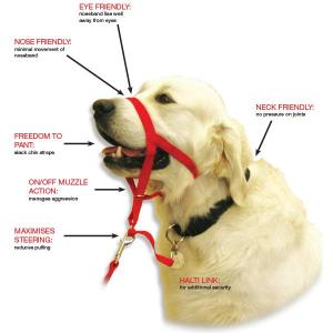 "Halti headcollar. A golden retriever is shown in the red halti headcollar. It has a number of arrows pointing to parts of the dog, with text at the end of the arrows. The text (capital letters in red, non-capital letters in black) says: ""NECK FRIENDLY: no pressure on joints"" ""EYE FRIENDLY noseband lies well away from the eyes"" ""NOSE FRIENDLY: minimal movement of noseband"" ""FREEDOM TO PANT: slack chin straps"" ""ON/OFF MUZZLE ACTION: manage aggression"" ""MAXIMISES STEERING reduces pulling"" ""HALTI LINK: for additional security"""""
