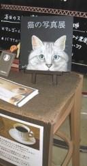 猫の写真展のプチ看板