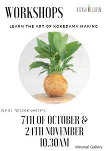 Kokedama Workshops, Weswal Gallery, DIY Kokedama, a Dash of Green