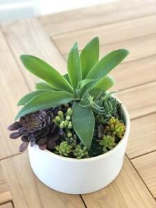 Round white planter