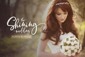 The Shining Wedding Fonts Bundle