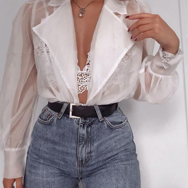 Sheer Mesh Notched Collar Long Sleeve Blouse 2
