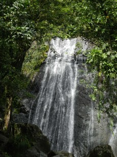 The first waterfall you'll see when you enter El Yunque.