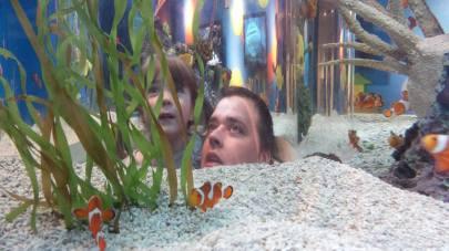 At Ripleys Aquarium