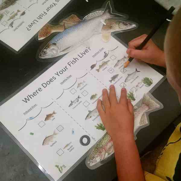 boy doing fish project fairmount water works
