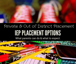 placement options for special education students