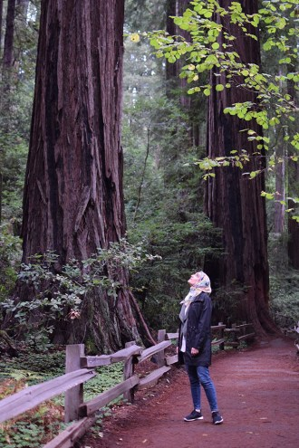 Muir Woods - San Francisco - Redwoods - Travel Blog - Muir Woods Hike - Fashion Blog - Haute Hijab Scarf