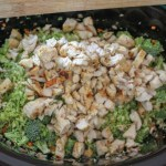 Crock Pot Broccoli and Chicken Soup