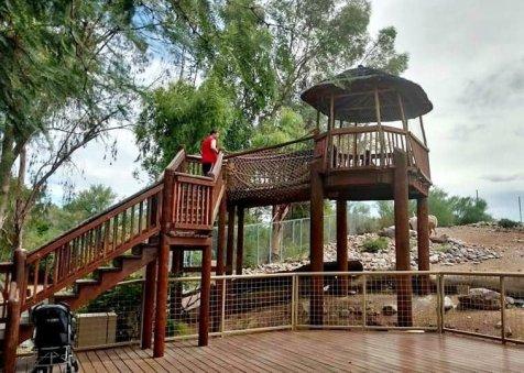 Phoenix Zoo Family Fun In Arizona