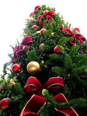 Holiday and Christmas Events in Rhode Island 2012