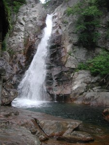 The Glen Ellis Falls in Jackson, NH is a beautiful waterfall that is one of the best things to do in New Hampshire.