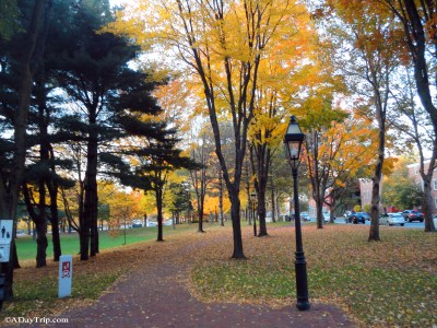 Roger Williams National Memorial Park offers a great place to take a walk and great views of the city.