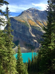 Beautiful view of Lake Louise along the Plain of Six Glaciers trail in Banff National Park.